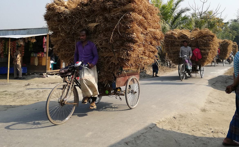 VSO_Bangladesh